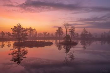 Весенняя акварель / Ранним майским утром