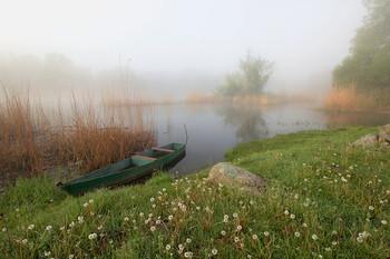 На зелёной стоянке. / Река Южный Буг. Украина. В районе села Мигея.