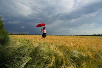 В ожидании любимого / Украина. Пшеничное поле.