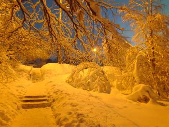 Утро 1 января, - 30 .. / возле родника в Причальном, никого )