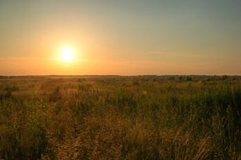 Закат / закат в поле