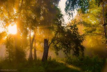 Утренний пейзаж / ...
