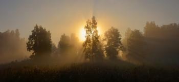 Рассветало утро солнцем золотым / Ясная поляна. Тула