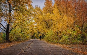 Осенняя пробежка / Место моих наиболее частых прогулок по косе вдоль гребного канала