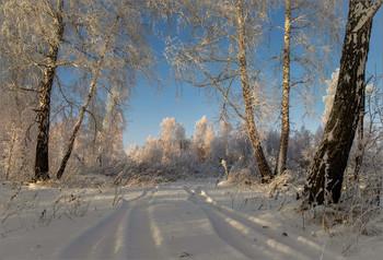 В зимнем наряде... / ......