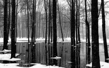 Зимний этюд... / Слякоть и капель в декабре, Словно вдруг апрель на дворе. Дождик промелькнул, пробежал. Мокрый снег на лужу упал...