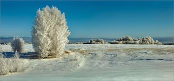 Одним зимним днем... / ......