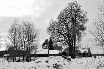На деревню выпал снег... / Зима пришла и холода, И ветер резкий и колючий. А в небе тёмном как беда, До горизонта глыба тучи.  Дым из трубы печной столбом, К морозу — верная примета. Заиндивел, седой весь дом, А речка в панцирь льда одета.