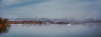 Утро на озере / Утро на озере