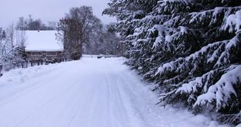 """/ """"...Зима это значит, что всё побелело. Поступки и мысли блестят пустотой. Лишь только остыло ненужное тело, Не дружит оно со своей головой. Зима это значит всё снегом укрыто. Никто не найдёт беглеца до весны. А между созвездий, вселенной забыто, Покоится тело укутавшись в сны...."""""""