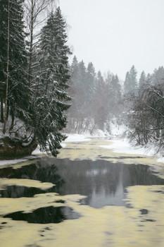На исходе зимы / р. Оредеж