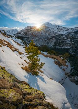 В лучах солнца / Из серии «сосны на Уштулу».  Кабардино Балкарская республика. Февраль, 2021 год. Из фотопроекта «Кавказ без границ».  Приглашаю в индивидуальный фототур «Кавказские горы». Подробности здесь https://vk.com/topic-69994899_46654306 (контакт) и https://www.facebook.com/notes/фотохудожник-фёдор-лашков/индивидуальный-фототур-кавказские-горы/474071613981404/ (фейсбук).