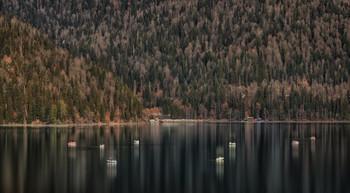 Озеро Рица / ...