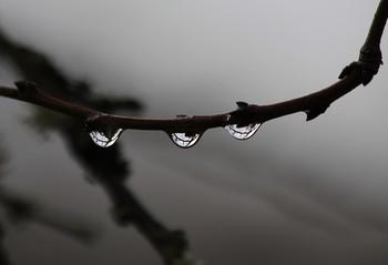 / ожерелье дождя...