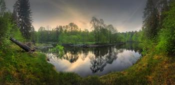 В тихом омуте.. / Нижегородская область, окрестности п. Линдо - Усад, река Линда