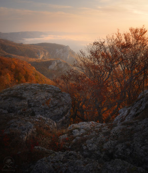 Утренний пейзаж / Крым