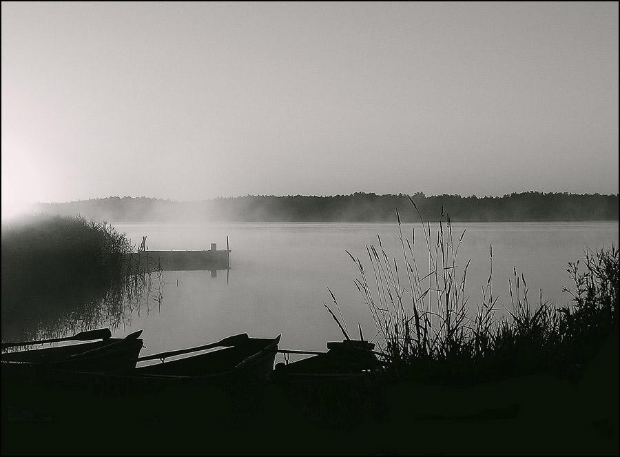 фотоаппаратов сон рыбака фото краски окружающего мира