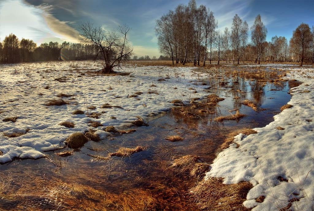Надписью, картинки ручьи весной