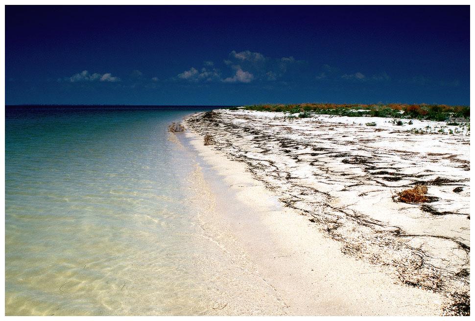 это азовское море фотографии пляжа модель