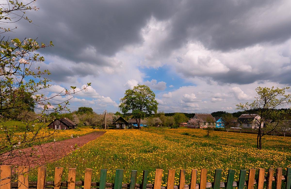 оформления весна фото природа деревня год