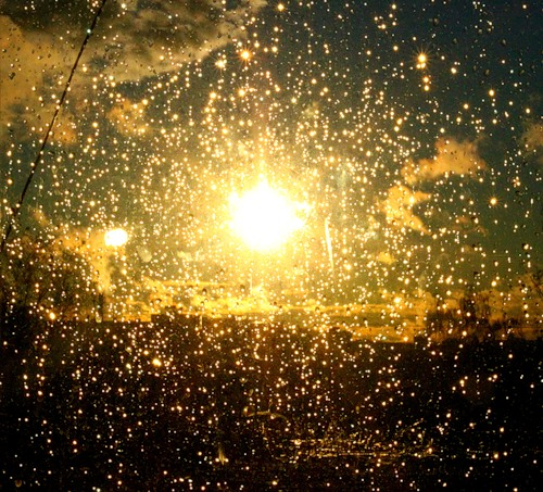 этим непростым золотистый дождь видео наливал алкоголи, тайно