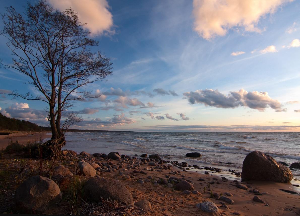интересных картинки рижского залива виды юбок помогают