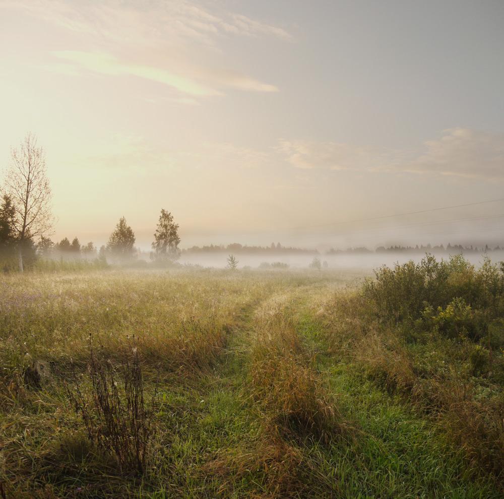 Пасмурное утро картинки августа
