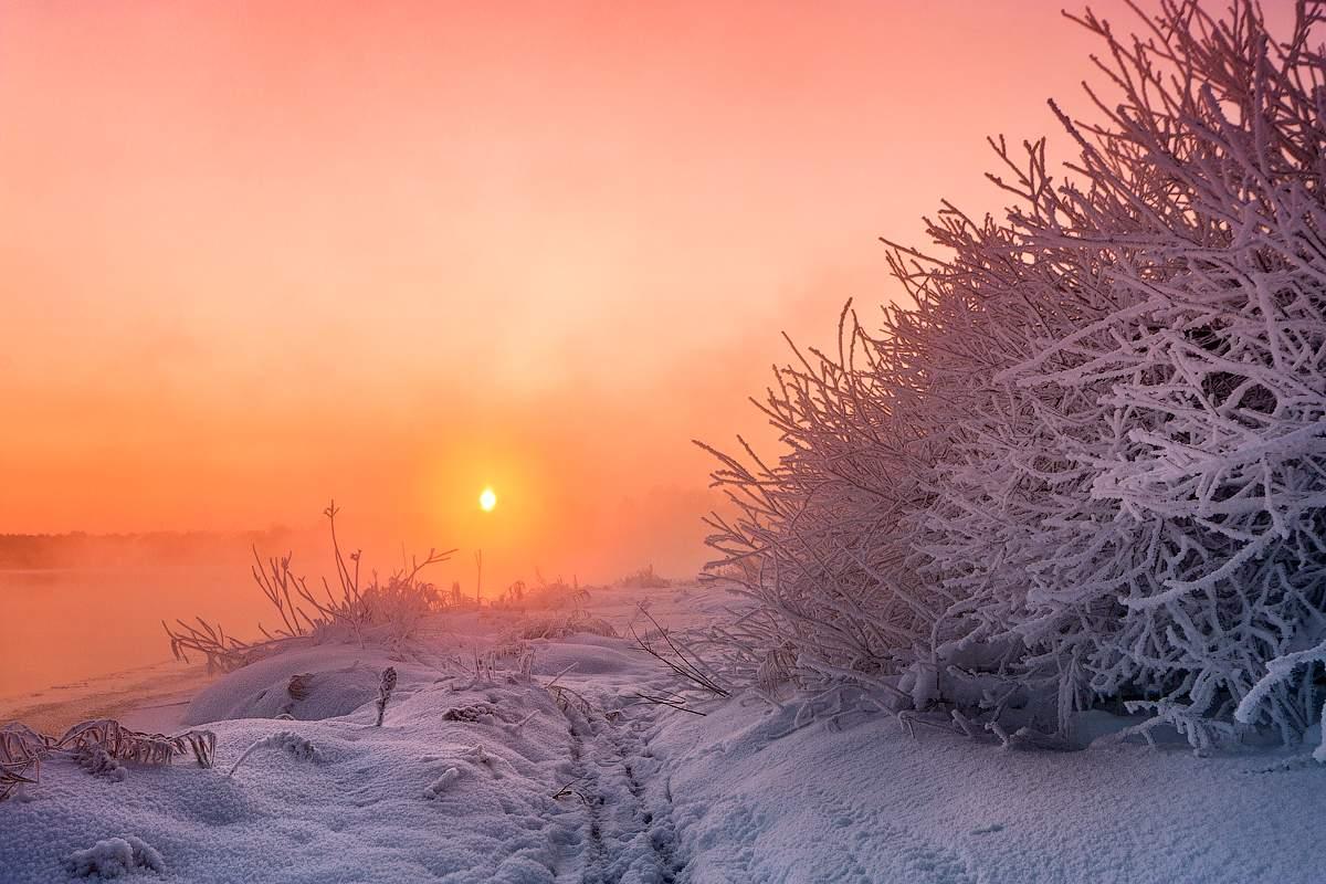 Картинки оптимистам в снежное февральское утро, пример открытка