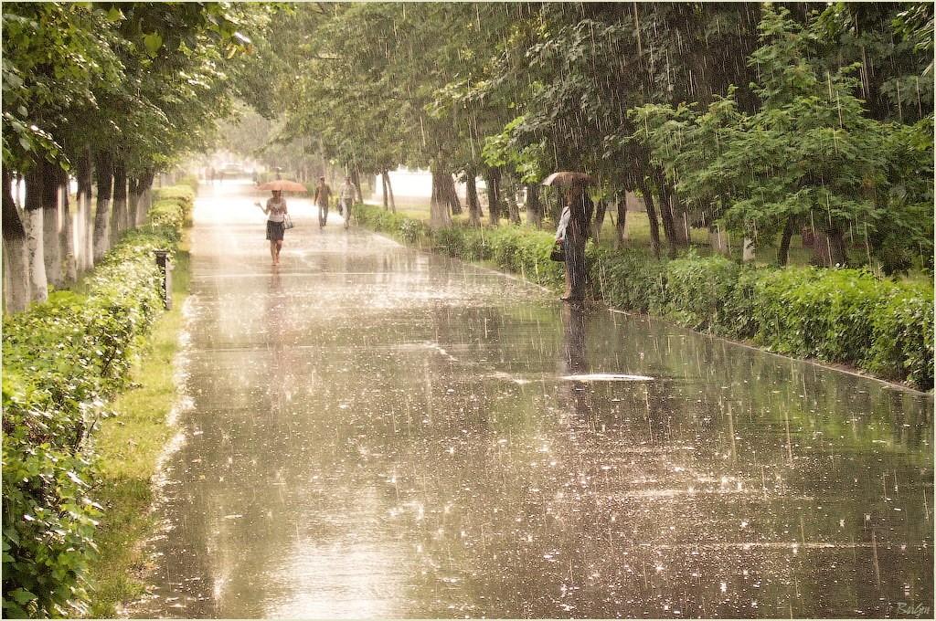 Картинки летний дождь в городе, купидоны православные картинки