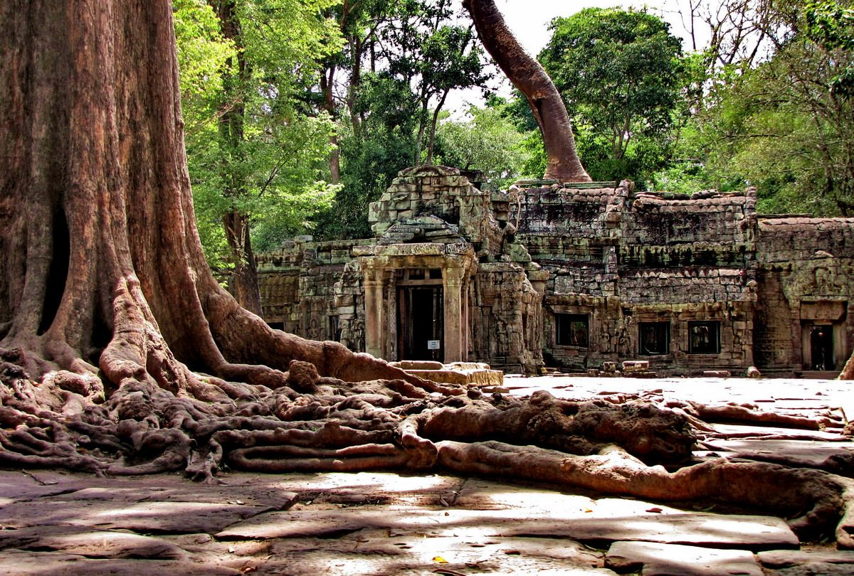 Город сиемреап в камбодже фото