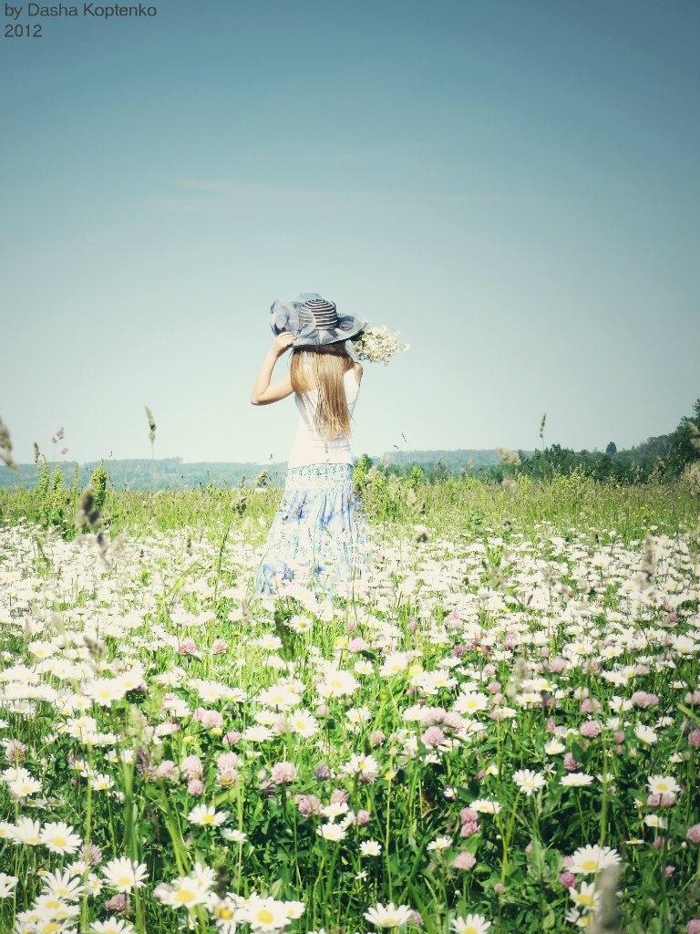 Картинка девушка идет по полю с ромашками