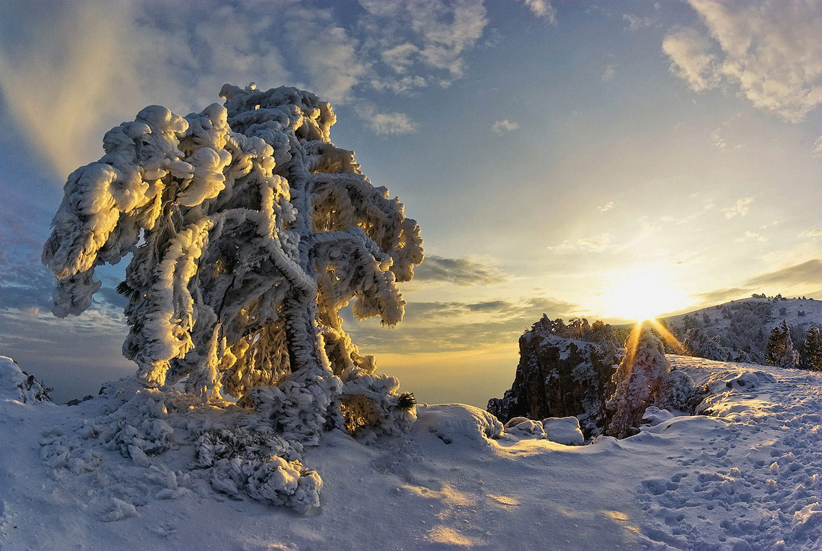 этого зима в крыму прикольные картинки который