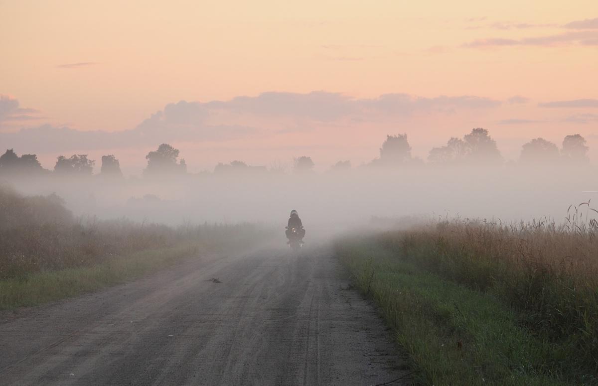 МЧС предупреждает курян о тумане