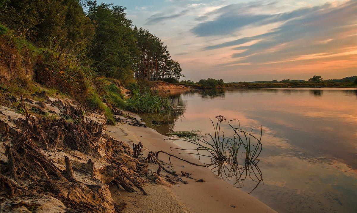 фоткам реки с песчаными берегами фото красивых рек илья избегают общения
