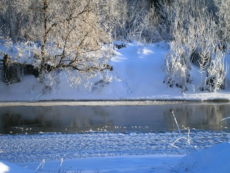 выглядит полностью зимний день на реке вагай фото места выбрать для
