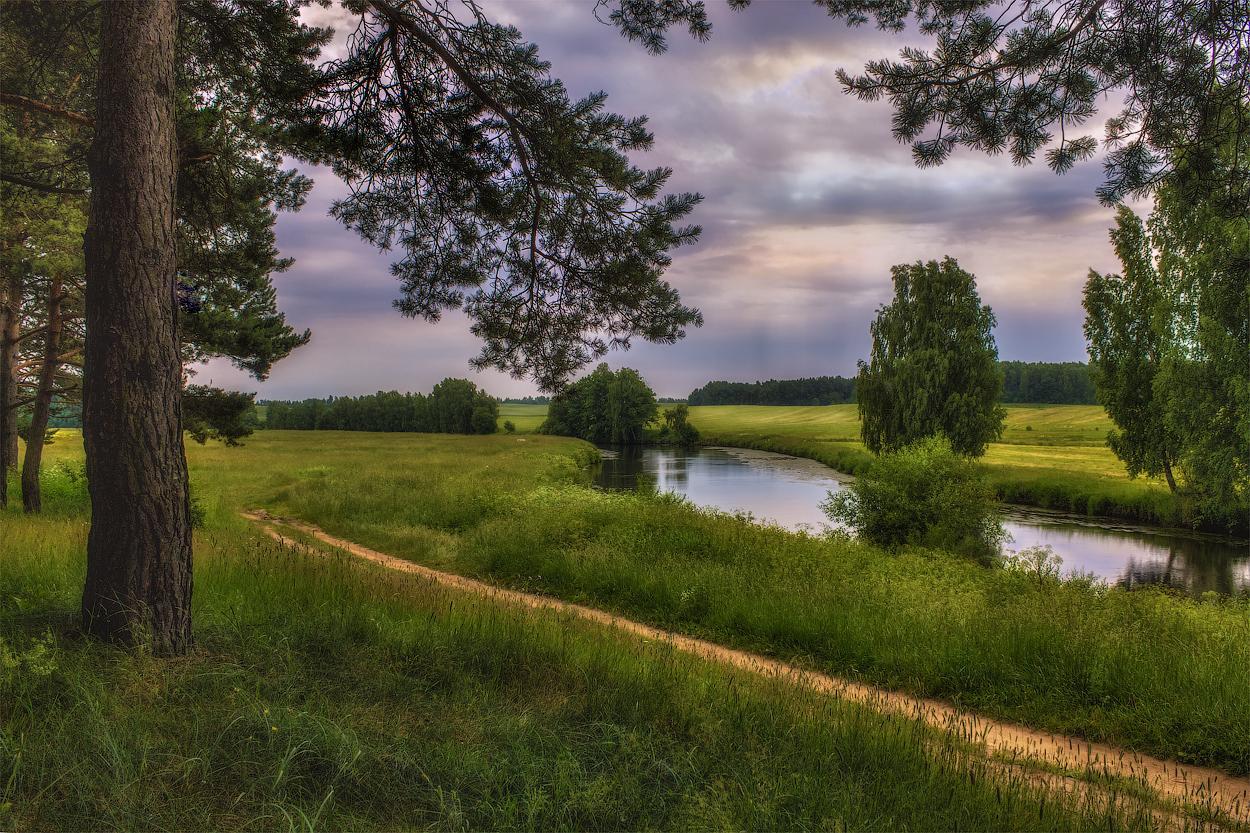 палов, картинка поле лес и речка военной карьеры
