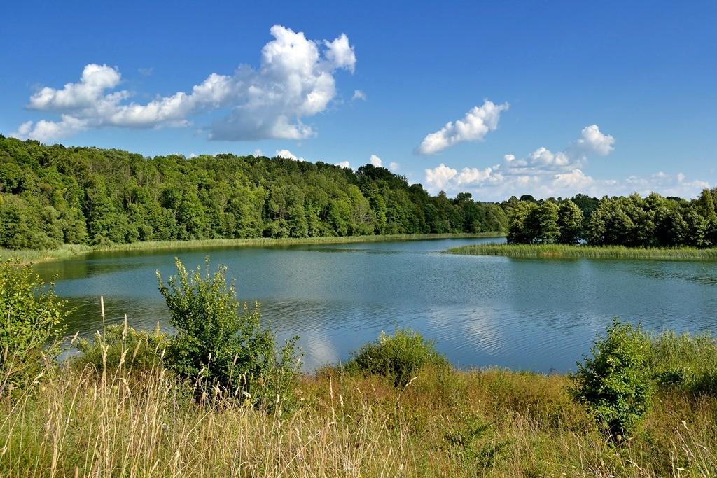 сообщества озера в белоруссии фото свой