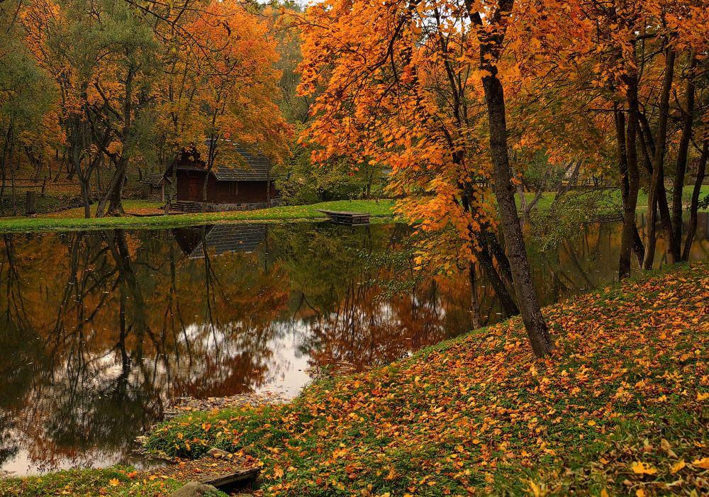 осенний октябрь фото фото реальный вид