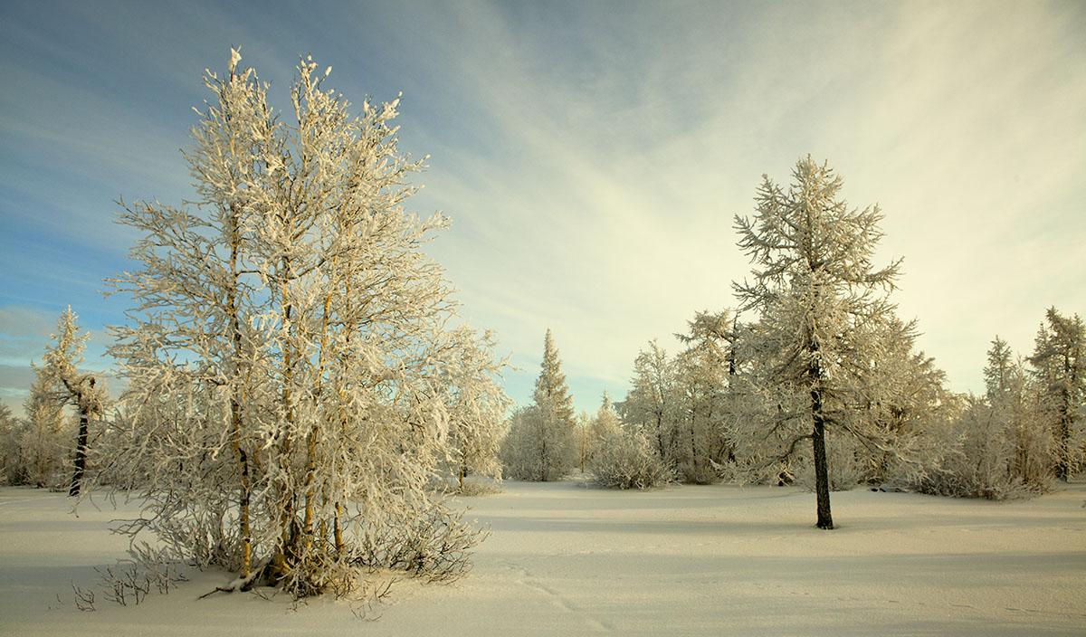 Картинки с анимацией падающий снег, картинку любимому мужчине