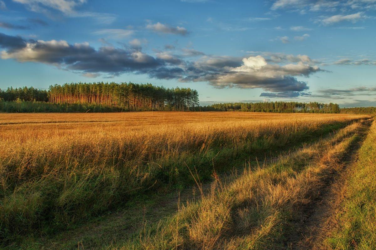 картинки о белорусской природе лучше, когда