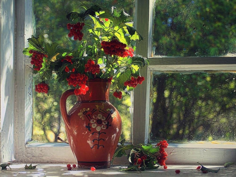 авторами понравившихся фотонатюрморты цветы на окне варится