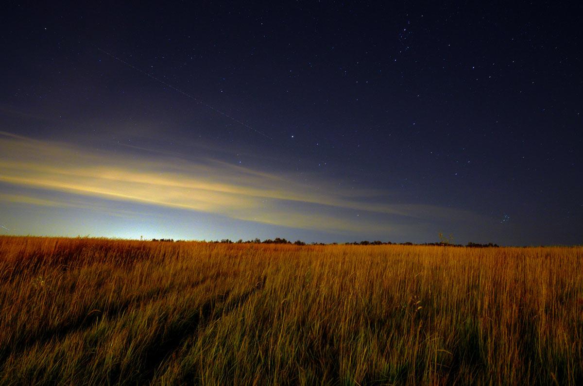 есть картинки ночью в поле звезд благодать такому заболевания