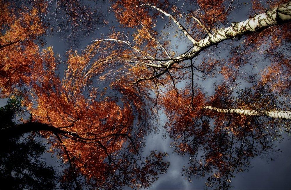 глаза кружат ветра картинки сезон