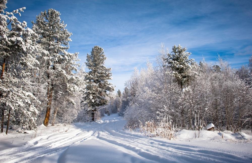 картинки зима декабрь январь своих