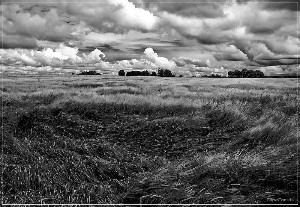 равнины картинки черно-белые добрые