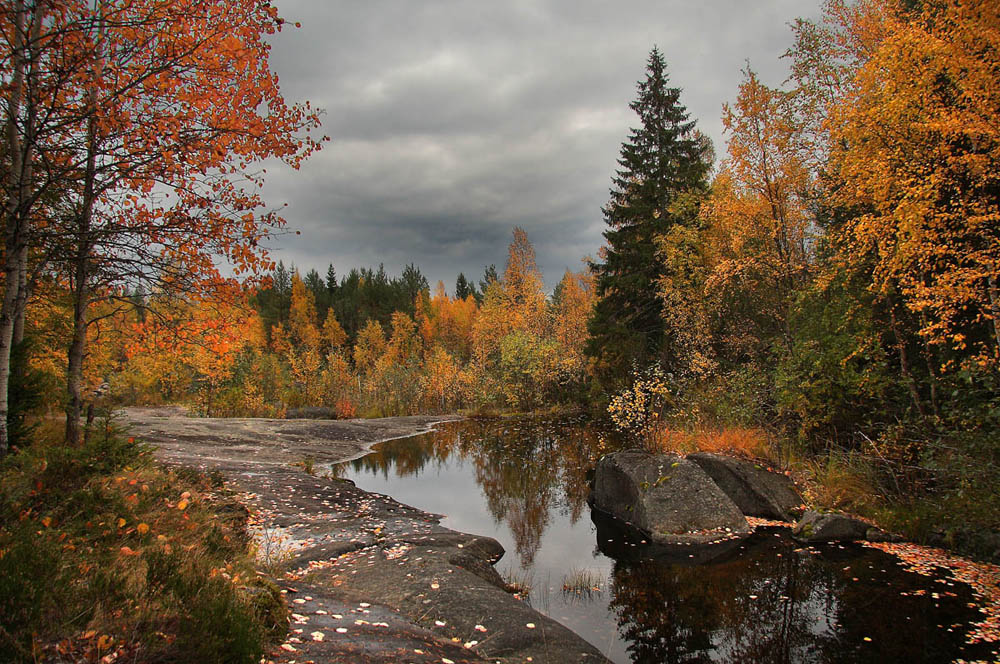 осень в карелии фото савеловском несколько раз