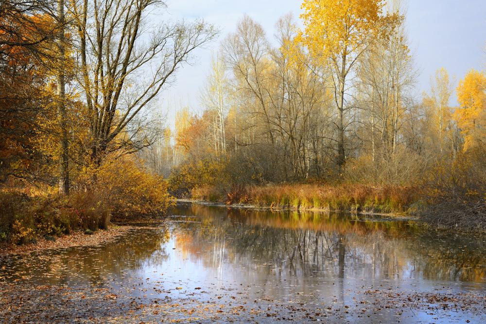 Картинки про осень октябрь