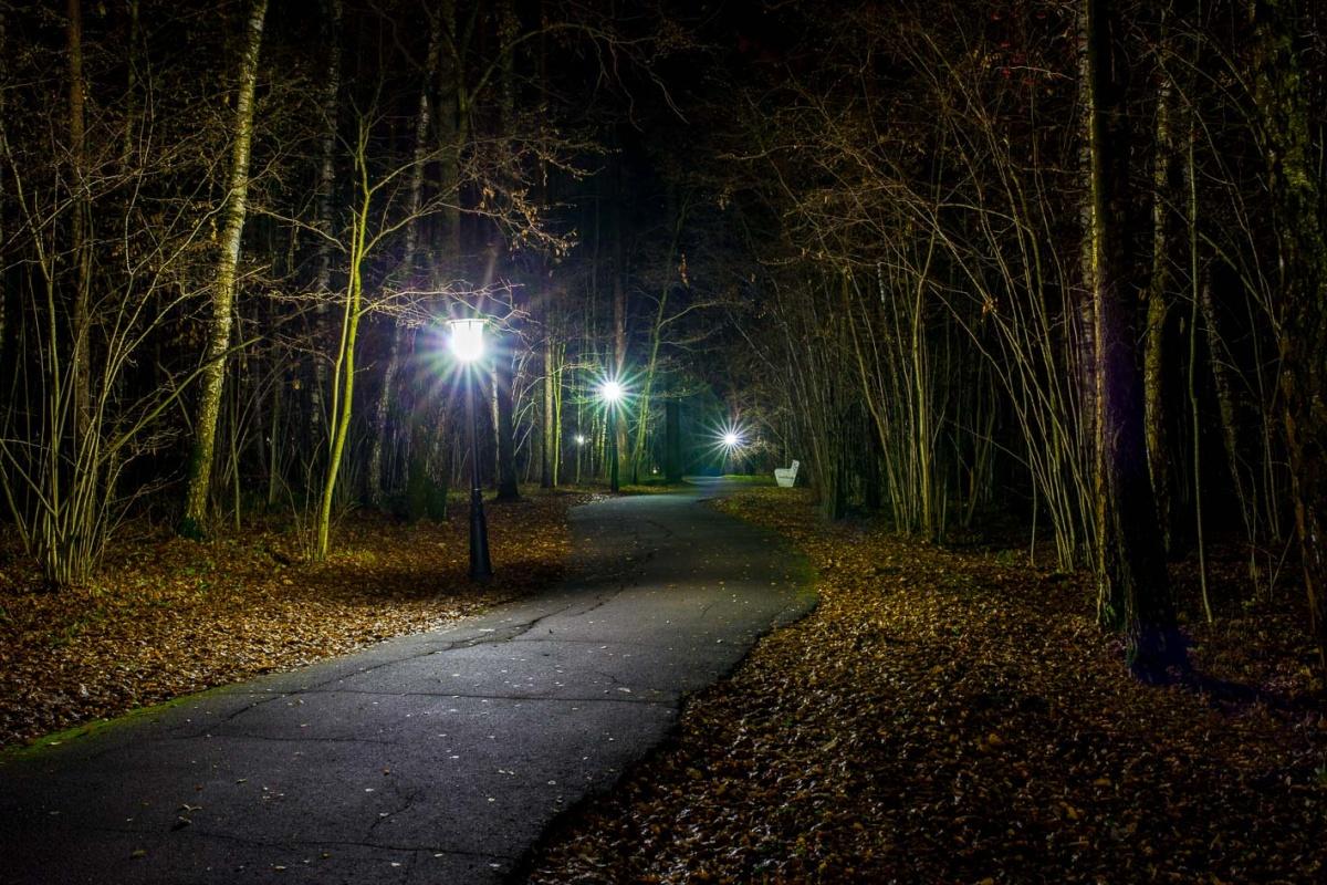картинки ночного пар