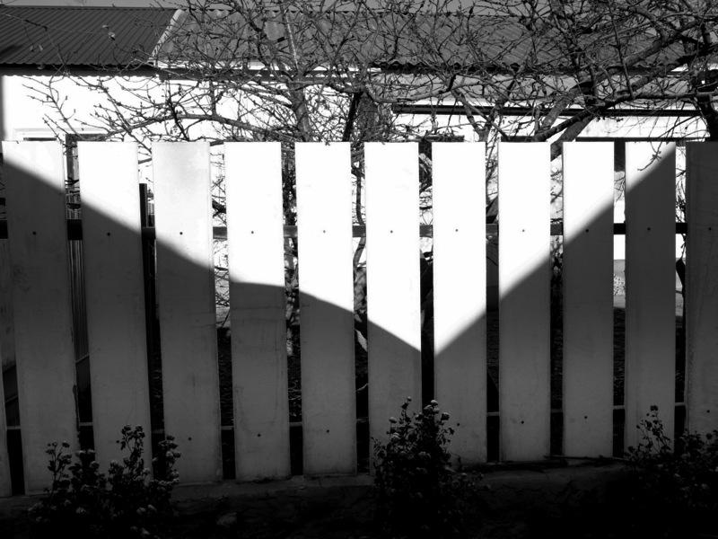 Картинка тень на плетень