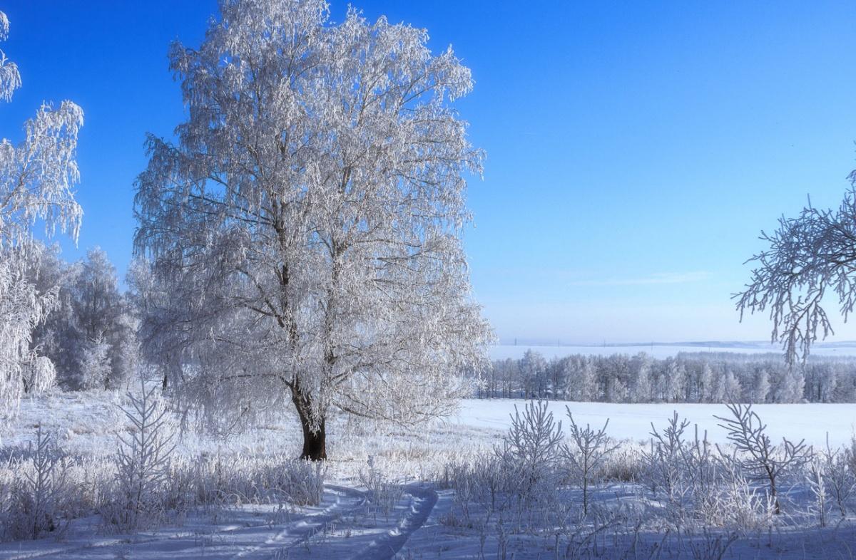 фото сайт зима в россии поможет